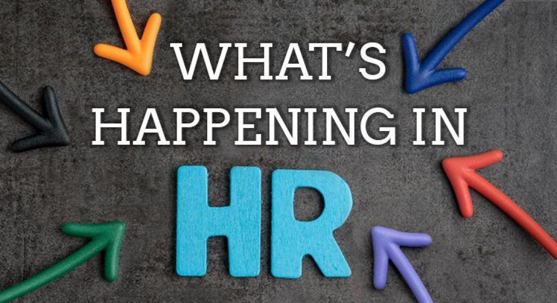 HR Pieces: January Newsletter